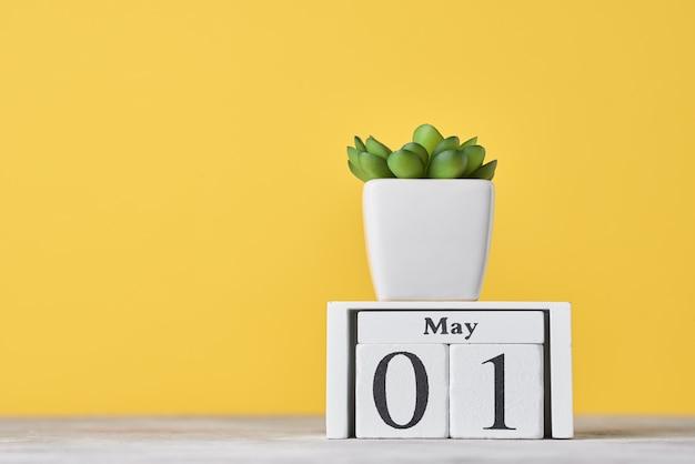 Calendrier De Bloc En Bois Avec Date Du 1er Mai Et Plante Succulente En Pot Sur Fond Jaune. Concept De La Fête Du Travail Photo Premium