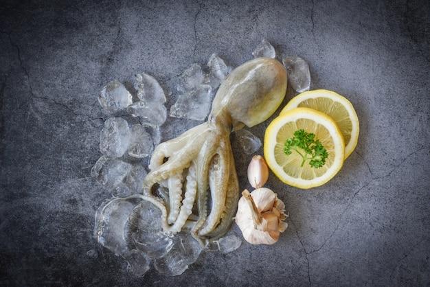 Calmars Crus Sur Glace Avec Des épices à Salade, Ail Citron Sur La Plaque Sombre Photo Premium