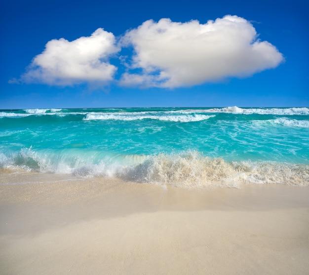 Cancun delfines beach à la zone hôtelière du mexique Photo Premium