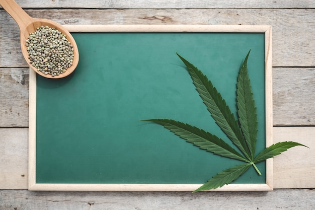 Cannabis, graines de cannabis, feuilles de cannabis, placées sur un tableau vert sur un plancher en bois. Photo gratuit