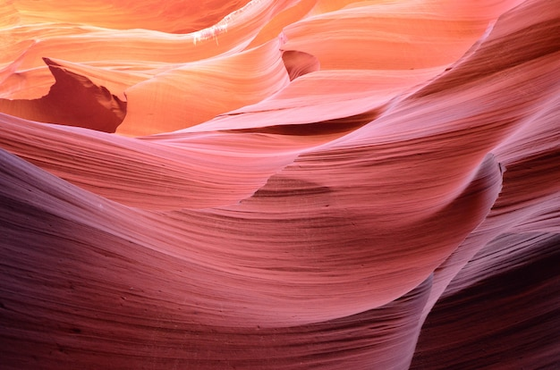 Canyon Antelope, Navajo, Page, Usa Photo Premium