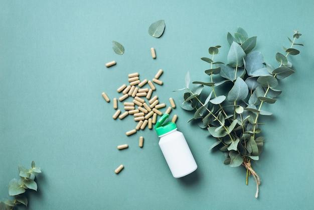 Capsules d'eucalyptus sur fond vert avec espace de copie. Photo Premium