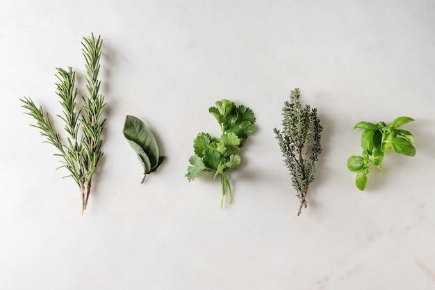 Carottes et herbes de cuisine Photo Premium