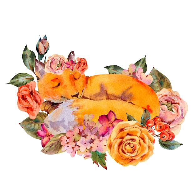 Carte De Voeux De Renard Floral Aquarelle, Renard Endormi, Roses, Hortensia, Fleurs Sauvages. Photo Premium