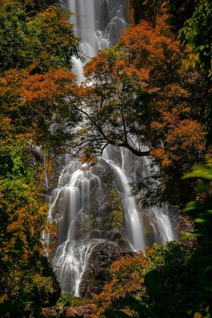 Cascade De Sunantha Avec Arbre D'automne Dans La Province De Nakhon Si Thammarat, Thaïlande. Photo Premium