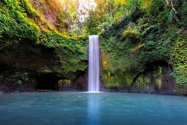 Cascade De Tibumana Dans L'île De Bali, Indonésie Photo gratuit