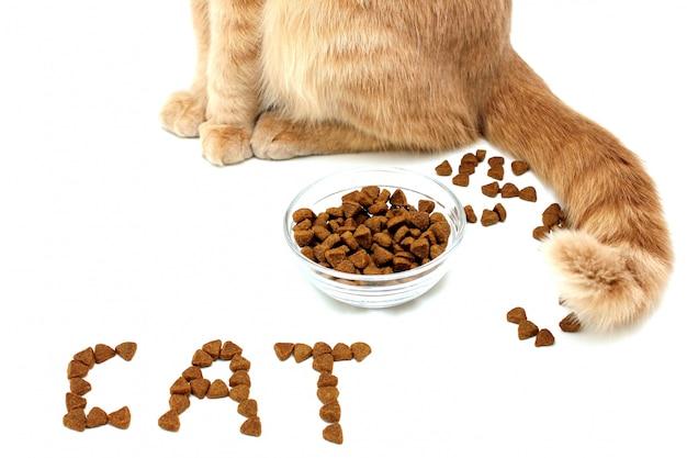 Le Cat Est écrit Avec De La Nourriture Sèche Pour Chats. Pattes Et Queue D'un Chat Rouge Près D'un Bol De Nourriture Sèche Pour Chats. Photo Premium