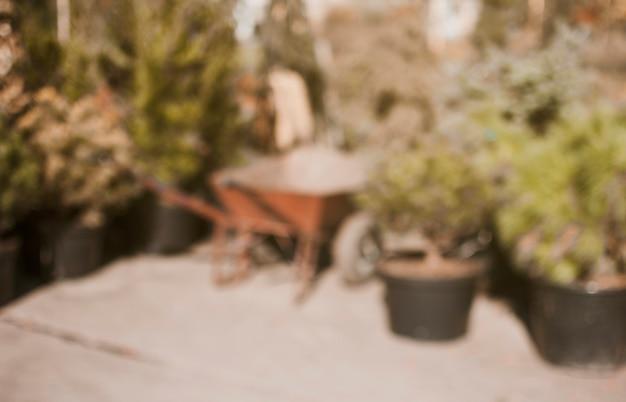 Centre de jardin flou Photo gratuit