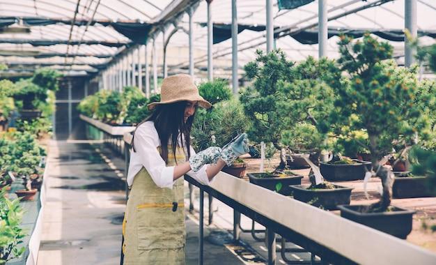 Centre De Serre Bonsai. Rangées De Petits Arbres, Femme Travaillant Et Prenant Soin Des Plantes Photo Premium