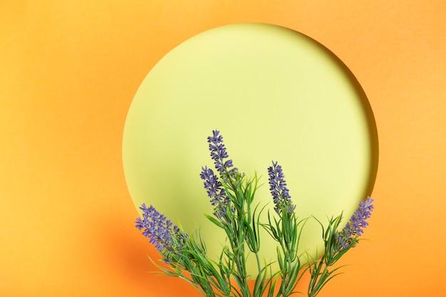 Cercle ppaer avec copie espace de lavande Photo gratuit