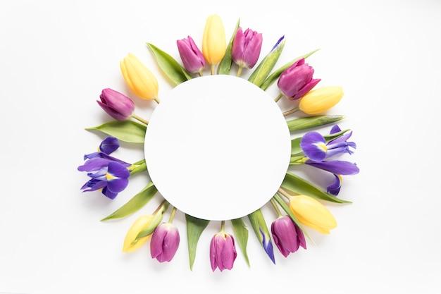 Cercle sur les tulipes et les iris Photo gratuit