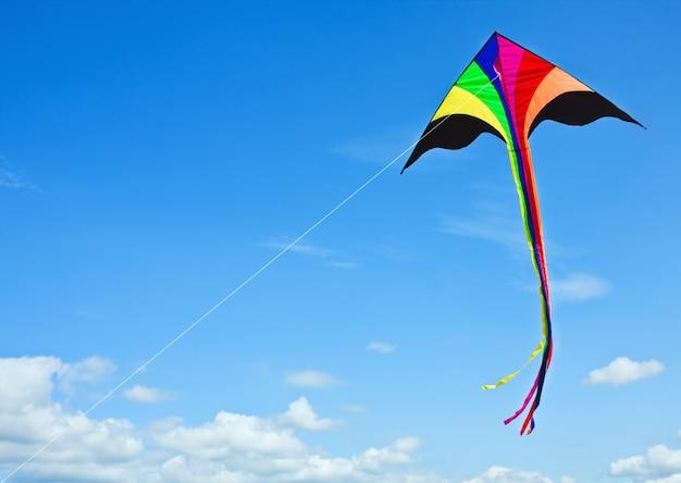 Cerf-volant multicolore Photo Premium