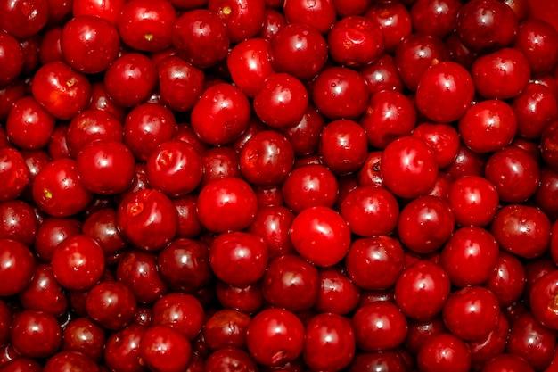 Cerise rouge douce Photo Premium