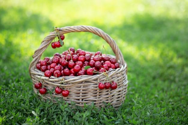 Cerises rouges mûres dans un panier rustique Photo Premium