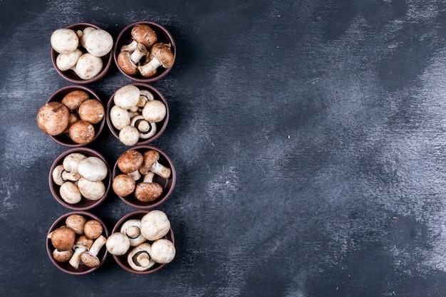 Certains Champignons Blancs Et Bruns Dans Des Bols Sur Table Sombre Photo gratuit