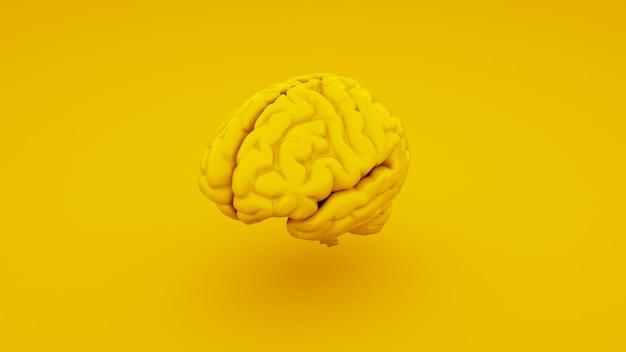 Cerveau Humain Jaune, Modèle Anatomique. Illustration 3d. Photo Premium