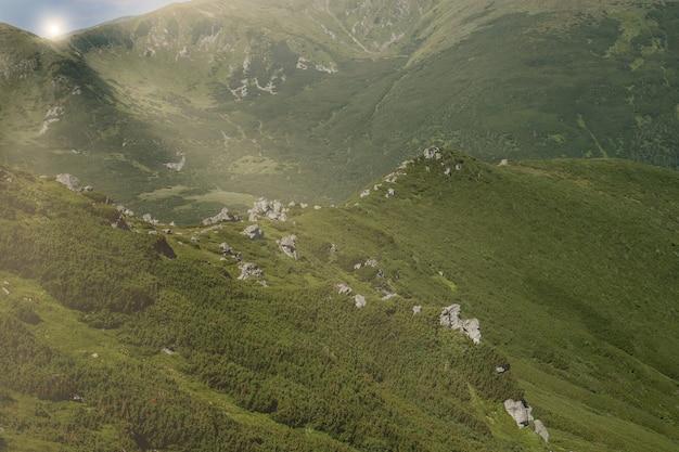 Chaîne De Montagnes Des Carpates Au Matin D'été Photo Premium