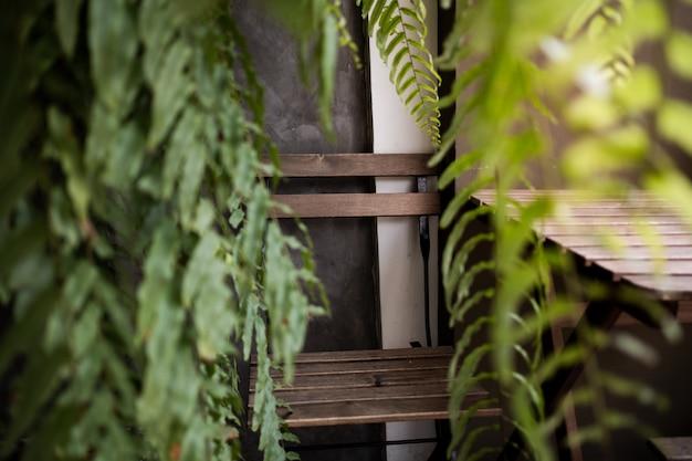 Chaise vide en plein air entourée de feuilles de fougère verte dans le jardin ou la cour. Photo Premium