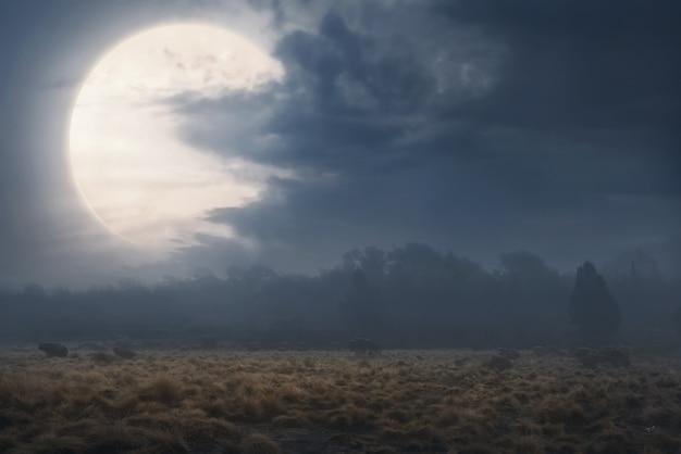 Champ avec brouillard et nuages sombres Photo Premium