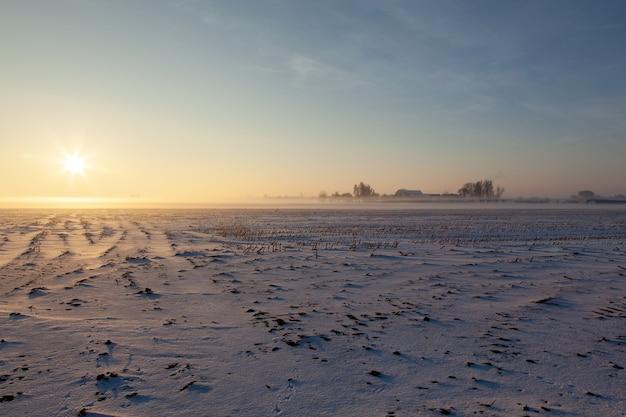 Champ Enneigé Vide Avec Brouillard Sous Un Ciel Bleu Photo gratuit