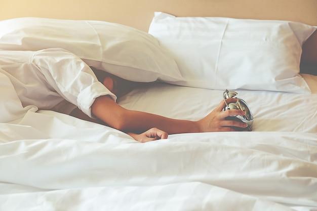 Champ sommeil paresseux à l'intérieur matinée Photo gratuit