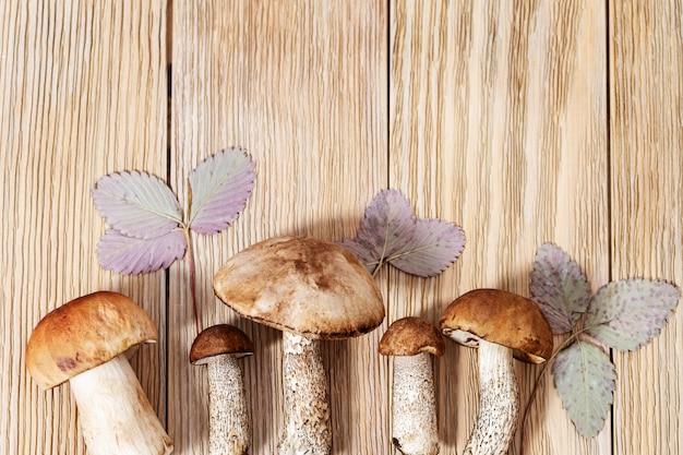 Champignons frais de forêt en gros plan, tige de scabre à coiffe rouge, bolet de bouleau. grand et petit bonnet brun. repas végétarien sain. alimentation biologique. vue de dessus. Photo Premium