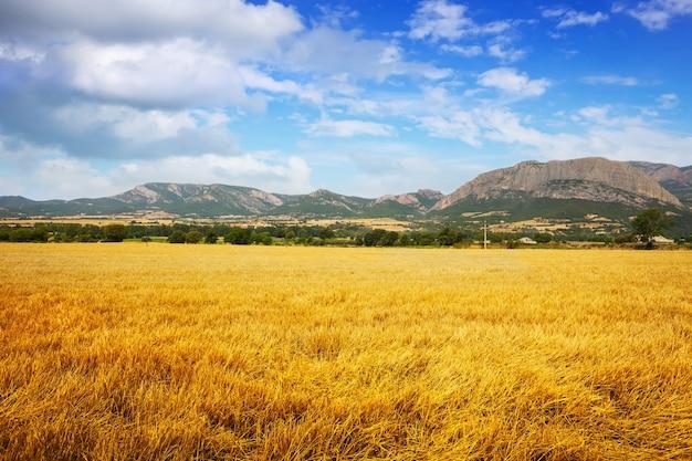 Champs à La Vallée De La Montagne Photo gratuit