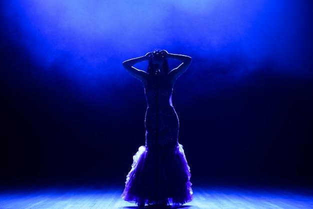 Chanteur En Silhouette. Une Jeune Chanteuse Sur Scène Lors D'un Concert. Photo Premium