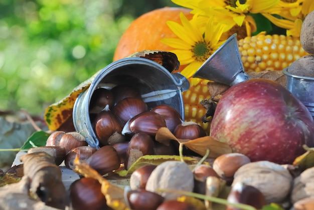 Châtaignes et autres fruits de saison Photo Premium