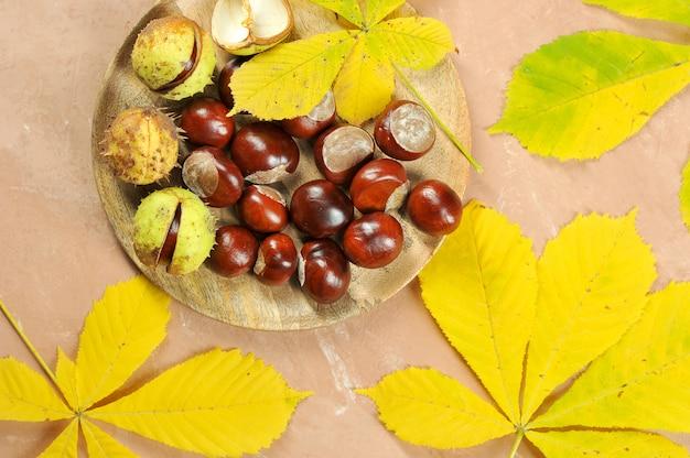 Châtaignes et feuilles d'érable Photo Premium