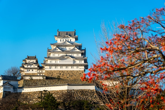Château d'himeji, l'un des plus anciens châteaux du japon Photo Premium