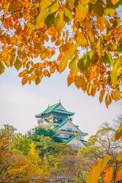 Château d'osaka à osaka au japon Photo gratuit