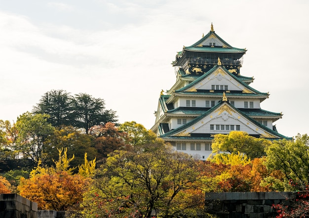 Le château d'osaka le vieux château. au japon photographie à l'automne feuilles d'automne Photo Premium