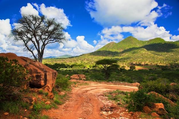 Chemin de terre avec des montagnes vertes Photo gratuit