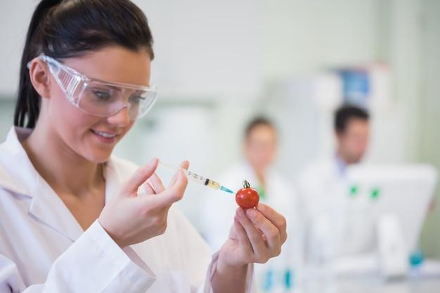Chercheur scientifique injectant de la tomate au laboratoire Photo Premium