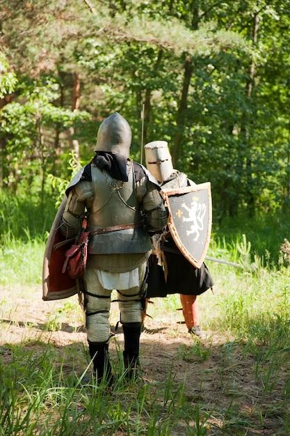 Les chevaliers armés se battent à la forêt Photo gratuit