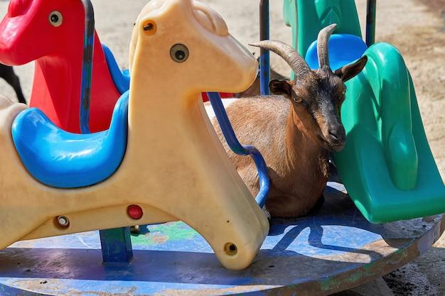 Une Chèvre De Montagne Avec De Longues Cornes Se Trouve Sur Un Carrousel D'enfants Parmi Les Figures D'animaux En Plastique Photo Premium