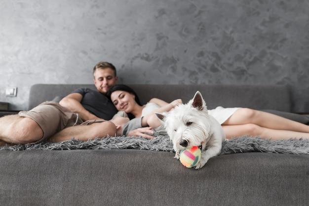 Chien blanc jouant avec ballon et famille se détendre sur un canapé à l'arrière-plan Photo gratuit