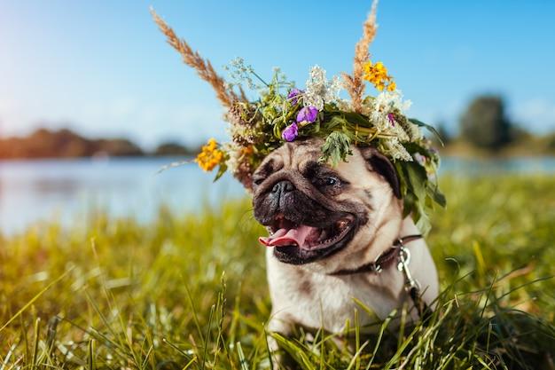 Chien carlin portant une couronne de fleurs au bord d'une rivière Photo Premium