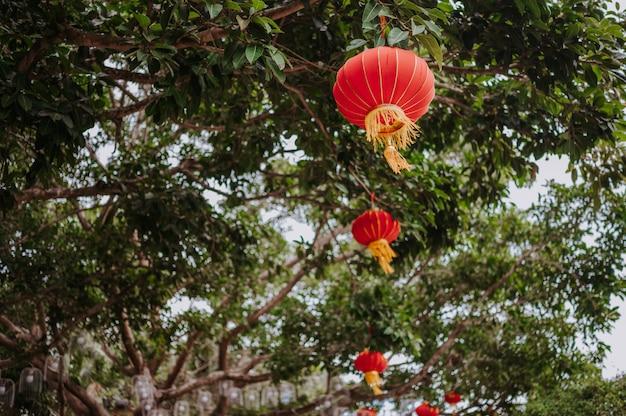 La Chine Voyage Des Lanternes Rouges Chinoises Dans Le Parc Naturel Pour La Bannière De Célébration Lunaire Du Nouvel An Chinois. Photo Premium