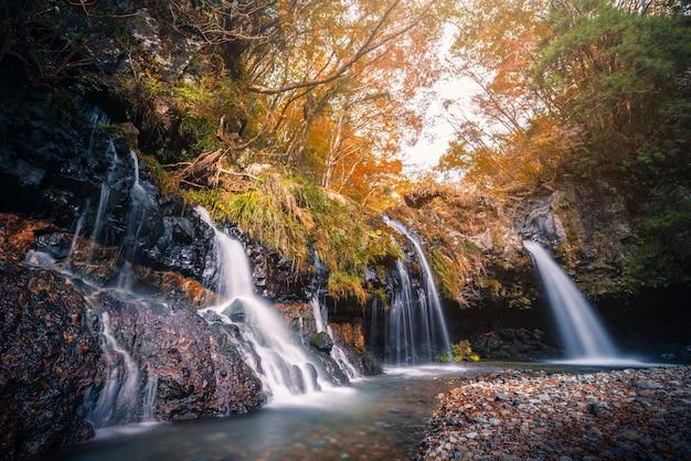 Chute d'eau avec feuillage d'automne à fujinomiya, japon. Photo Premium