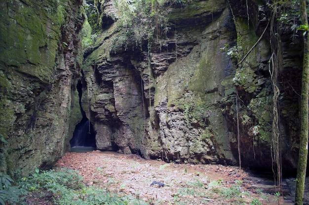Chute d'eau à l'intérieur d'un canyon sur santa catarina, brésil Photo Premium