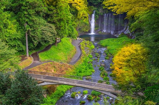 Chute d'eau de shiraito dans les contreforts sud-ouest du mont fuji, shizuoka, japon Photo Premium