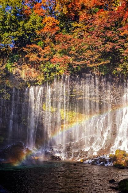 Chute d'eau de shiraito Photo Premium