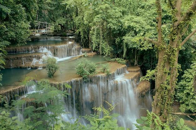 Chutes de la forêt tropicale de voyage en thaïlande Photo Premium