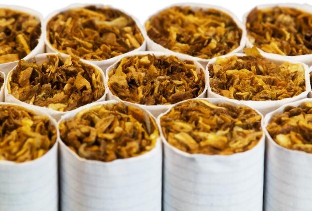Cigarettes dans un pack gros plan macro Photo Premium