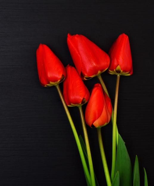 Cinq tulipes à fleurs rouges Photo Premium
