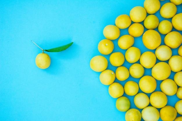 Citron frais avec des feuilles Photo Premium