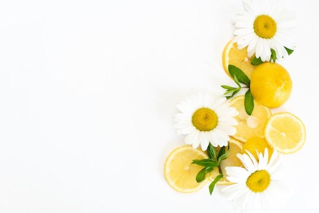 Citrons jaunes avec des fleurs de camomille fraîches sur une plaque blanche Photo Premium