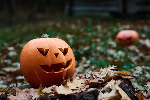 Citrouille D'halloween Dans Les Feuilles D'automne Photo Premium